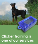 Dog Clicker Training Graphic